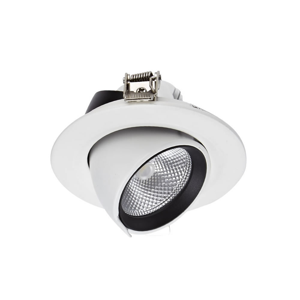Biard Faretto LED Downlight 10W Bianco da Incasso Orientabile
