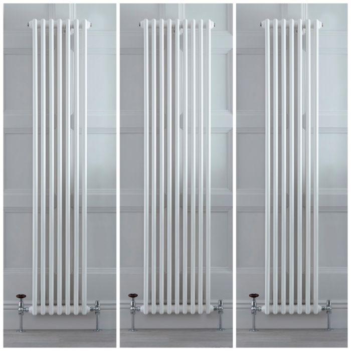 Radiatore Verticale Tradizionale a 2 Colonne – Bianco – Varie Misure – Stelrad Regal