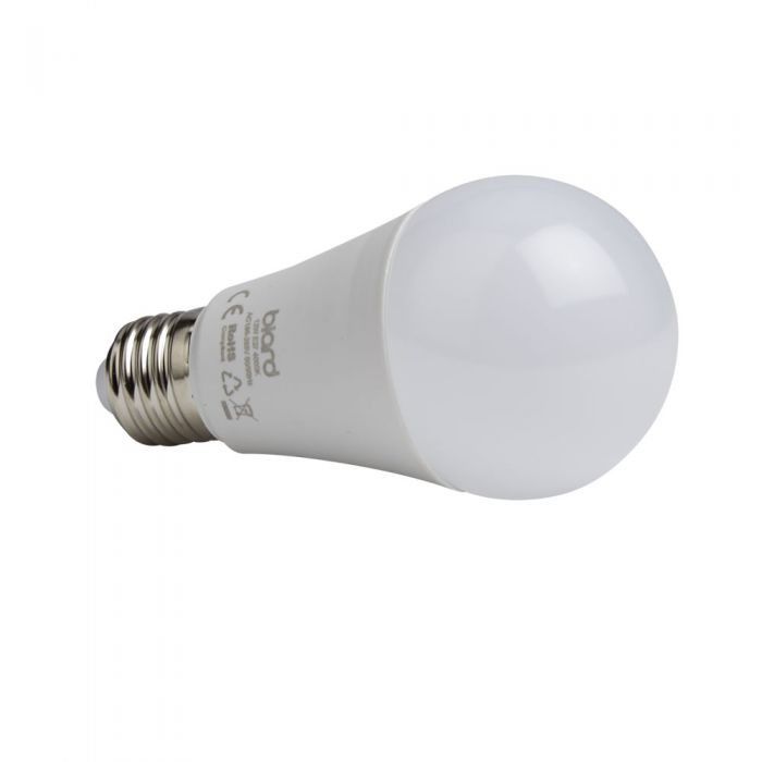 Lampadina LED E27 Dimmerabile 12W